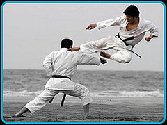 img_flyingkick.jpg
